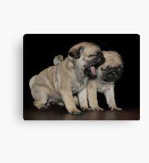 Dogs Breath Canvas Print