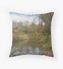 Oshawa Creek Throw Pillow