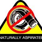 Naturally Aspirated Car by ShopGirl91706