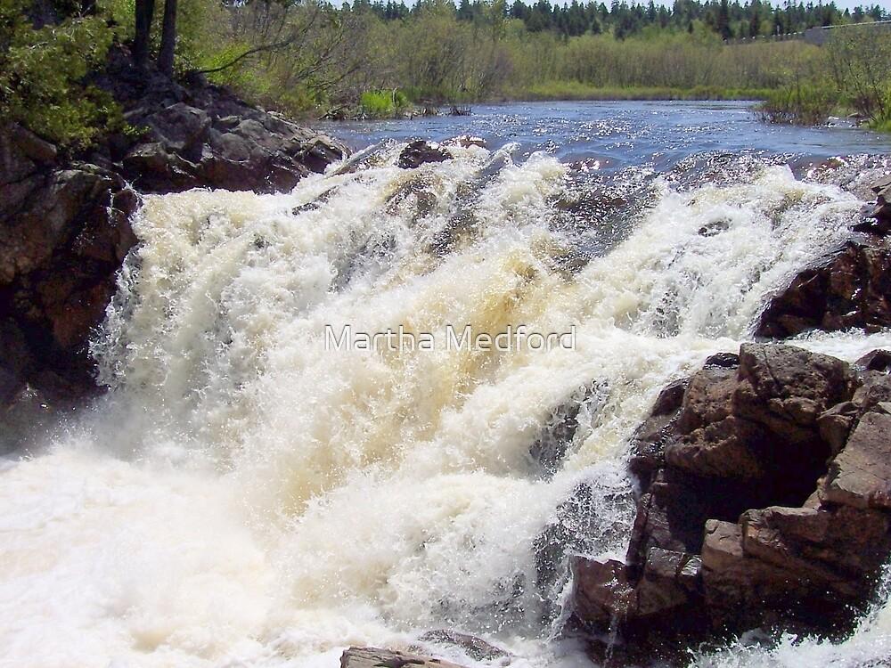 Rushing Waters - Lepreau Falls by Martha Medford