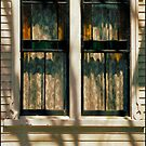 WINDOWS by JOHNNYC