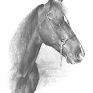 wavy-mane horse drawing by Mike Theuer
