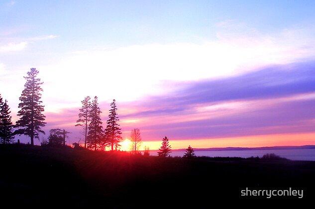 Purple Sunset by sherryconley