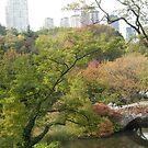 Autumn Colors, Bridge, Central Park, New York City by lenspiro