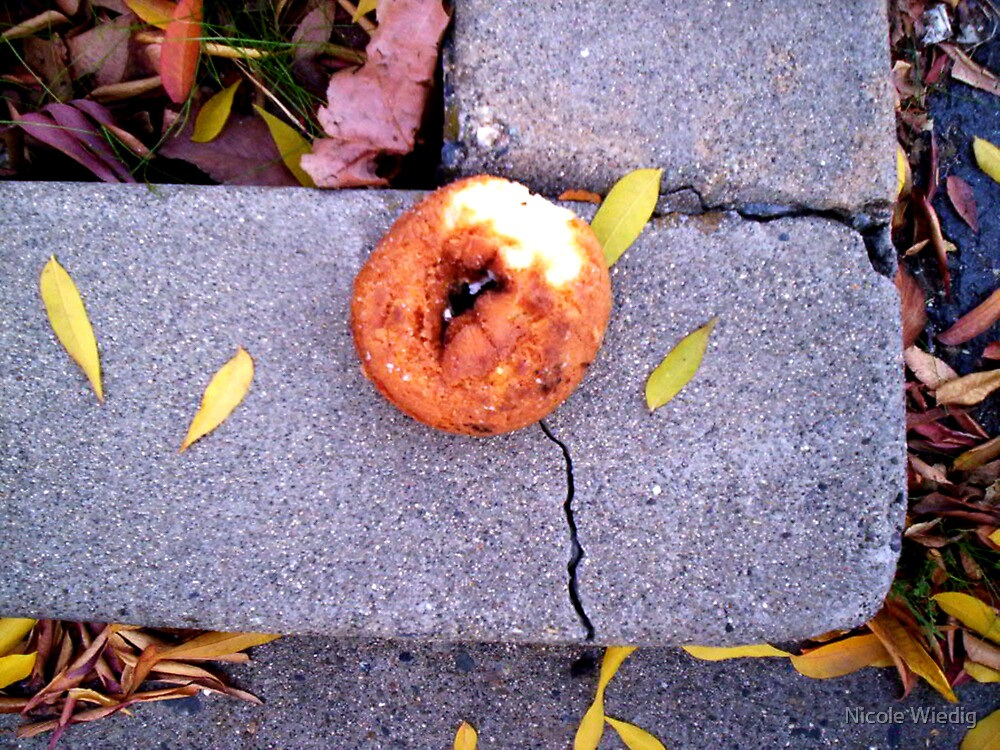 Wild California Doughnut on Crack by Nicole Wiedig