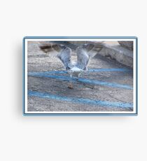 Lift Off  Metal Print