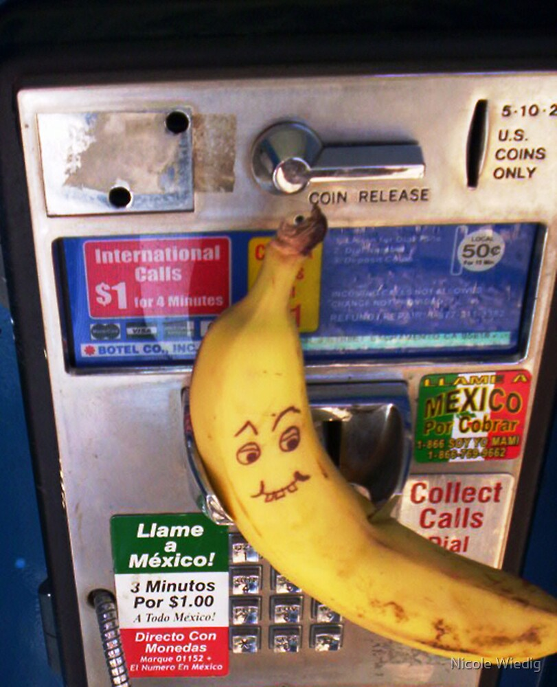 Domesticated California Banana Awaits Collect Call From Mexico by Nicole Wiedig