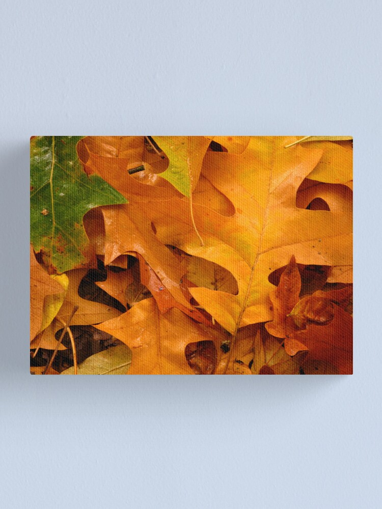 Alternate view of Autumn Leaves Canvas Print