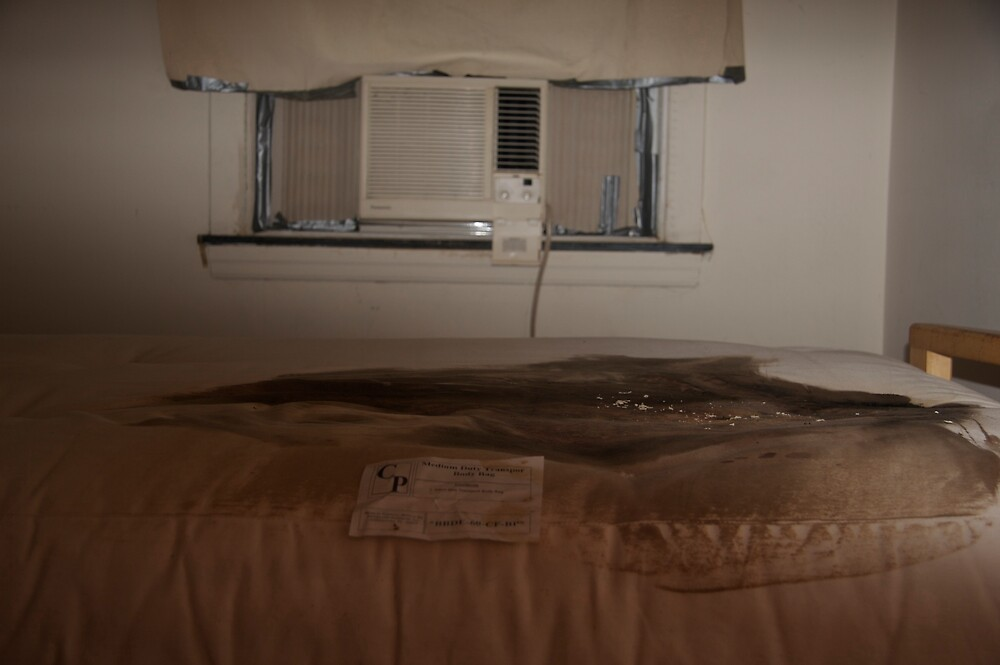 APARTMENT ONE  (LAST NIGHT IN BED) by martin venit