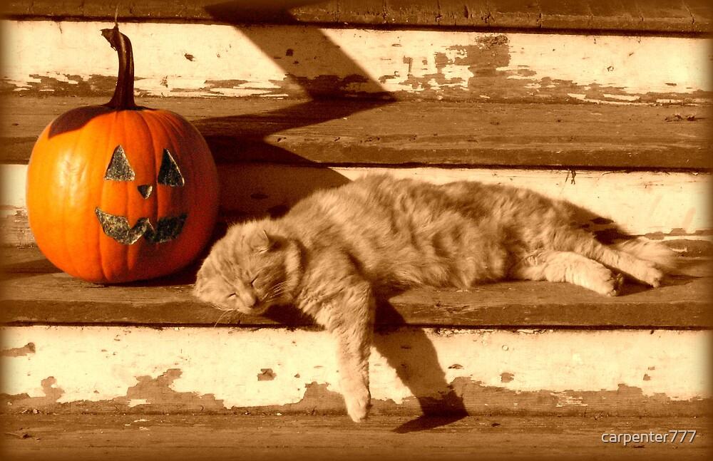 Turtles Halloween by carpenter777