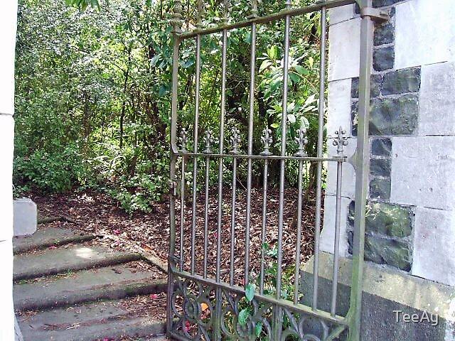 gate  by TeeAy
