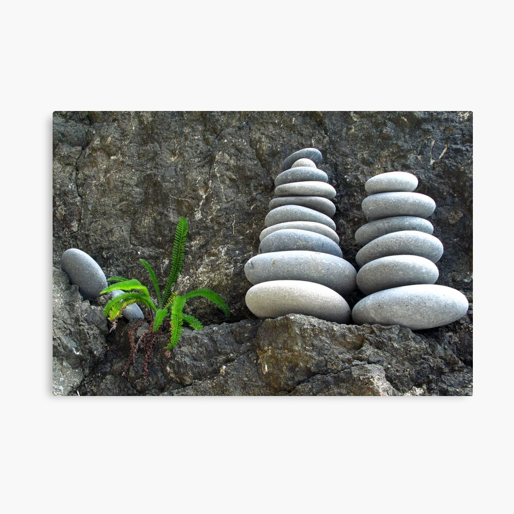 Fern Pebbles Canvas Print
