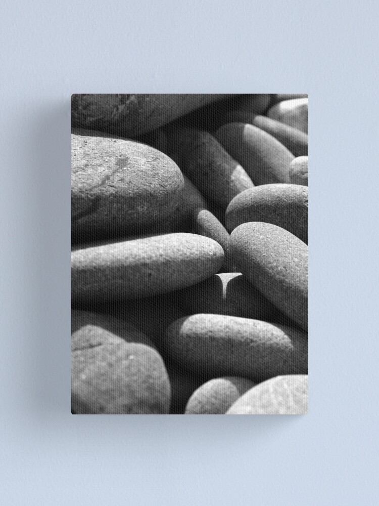 Alternate view of Pebbles Up Close Canvas Print