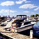 Wiggins Park Marina by Susan Savad