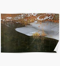 Cow Pond Brook Ice Poster