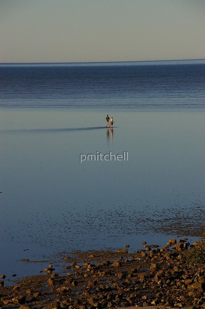 Walking on water by pmitchell
