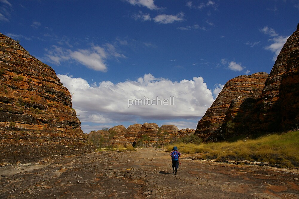 The Bungle Bungles, Western Australia by pmitchell