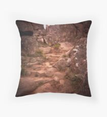 choose your path Throw Pillow