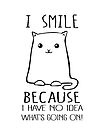 I smile because I have no idea what's going on - funny cat by jitterfly