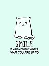 Smile. It makes people wonder what you are up to. Smiling Cat. by jitterfly