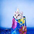 Birthday Kitten by idapix