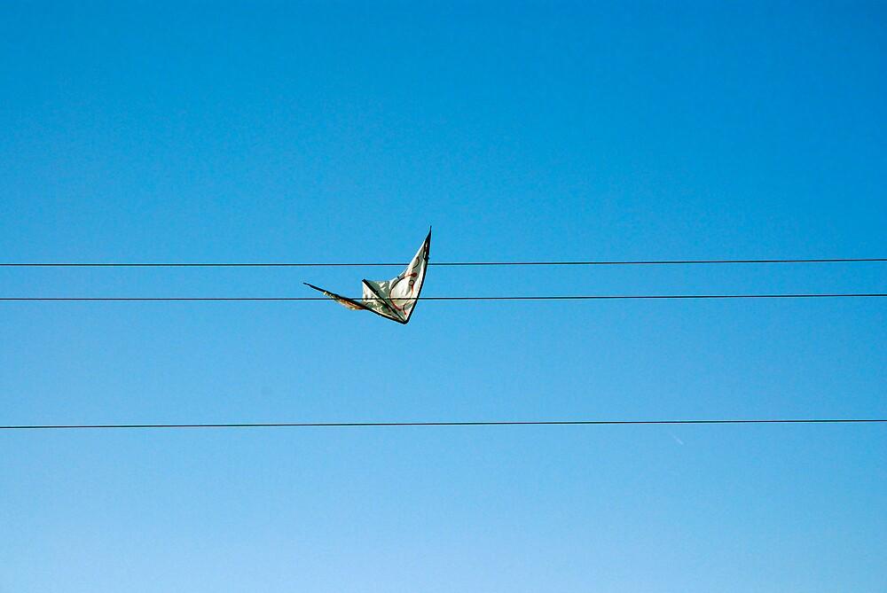 Kite, Spain by Rudolf