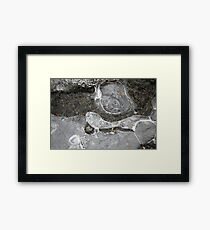 Winter Ice 3 Framed Print