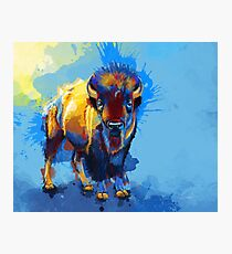 Lámina fotográfica En la llanura - Bison painting