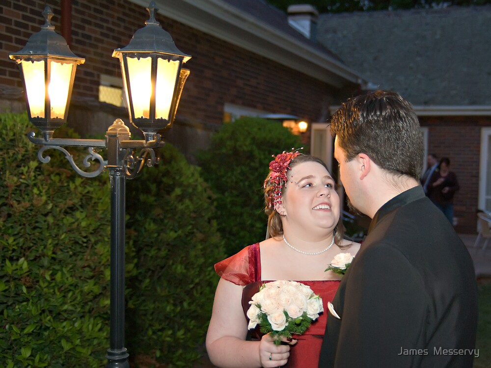 The Bride and Groom by James  Messervy