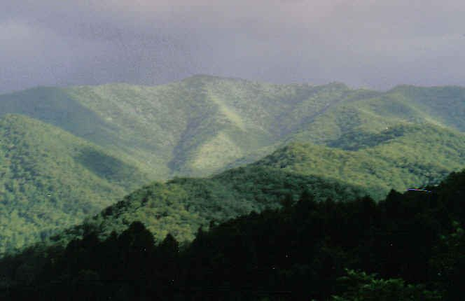 Smokey Mountains by Kimberly D. Allen