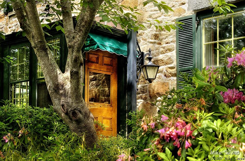 The door by Michael Savad