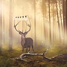 The Stag by Maria Murphy