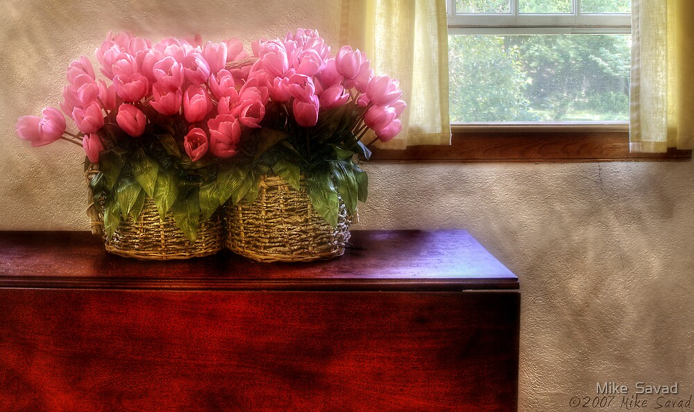 Tulips by a Window by Mike  Savad
