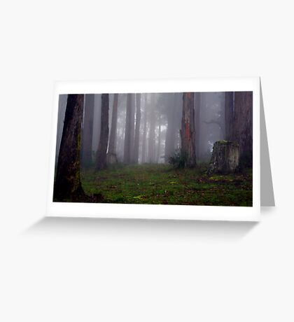 If you go out in the woods today... Greeting Card