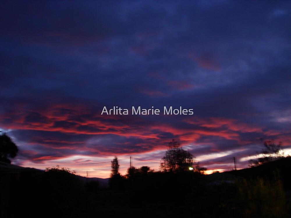 Untitled by Arlita Marie Moles
