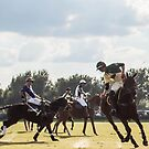 Polo Match at the Villages by Tom Causley