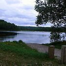 Rugg Pond - Kalkaska, Michigan by DeeLishess