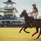 Polo Match  by Tom Causley