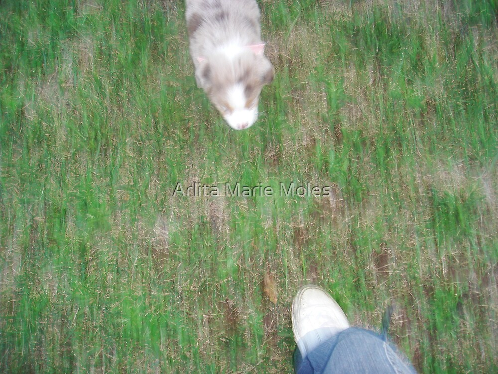 Panned Puppy n Me  by Arlita Marie Moles