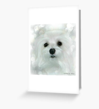 Snowdrop the Maltese - White on White Greeting Card