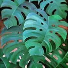 Monstera Love  by micklyn