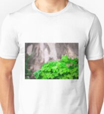 Green Clover and Grey Tree T-Shirt