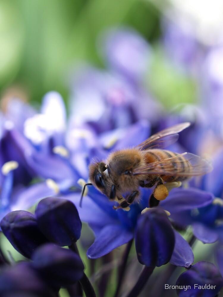A Busy Little Bee by Bronwyn  Faulder