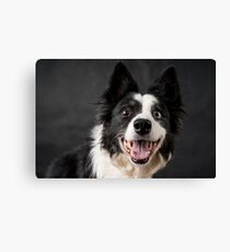 Such a happy face Canvas Print