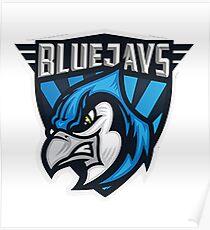 Blue Jays Toronto MLB Poster