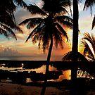 Run To Paradise by Varinia   - Globalphotos