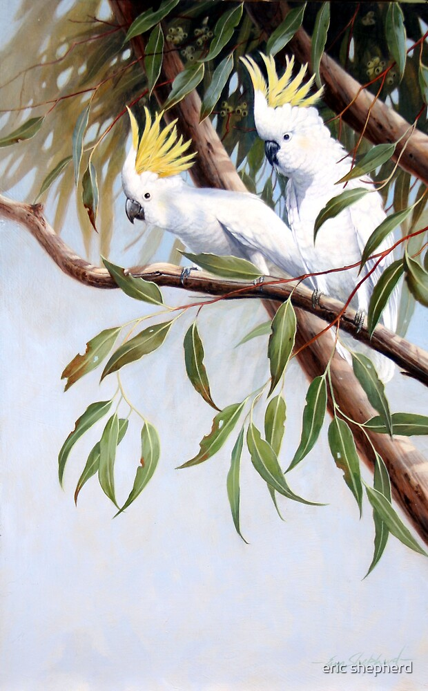 Two in a Tree by eric shepherd