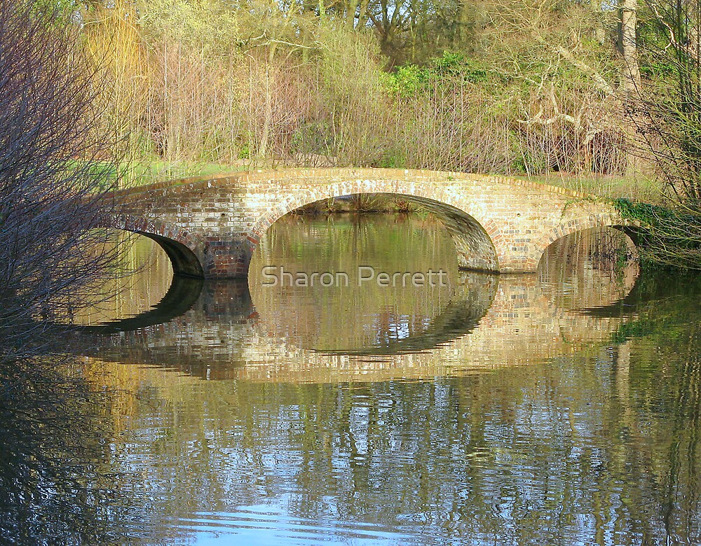 Time to reflect by Sharon Perrett