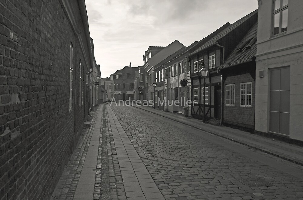 Cobblestone Lane by Andreas Mueller