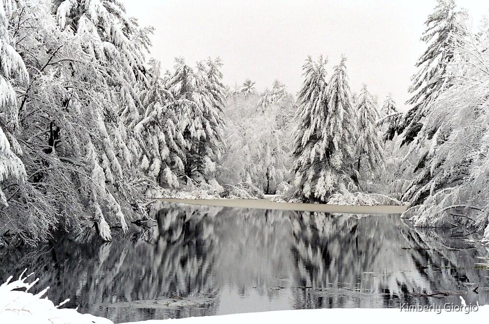 Snow Storm by Kimberly Giorgio